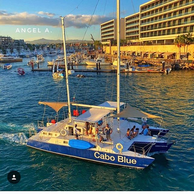 Cabo Blue Boat #boatsincabo #sunsetsinca