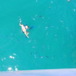 🤿 #caboblue #snorkeling #loscabos #mexi