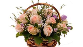 Поздравляем Правдину Веронику Алексеевну с Днем Рождения! Желаем Здоровья! Солнечных дней!
