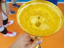 Поздравляем воспитанниц Хлопковой Н.В. с 1 местом на Первенстве Самарской обл. по волейболу!