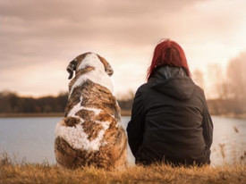 Grieving a Pet Loss: Why it is Important & How to Deal with It