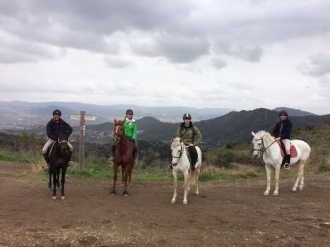Excursiones con caballos