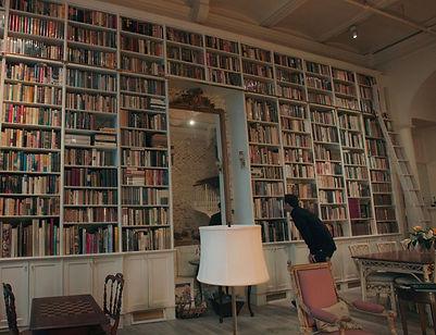 Booksellers_edited.jpg