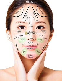 Face Mapping Philosophia Botanica