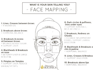 Traditional Chinese Medicine Face Mapping