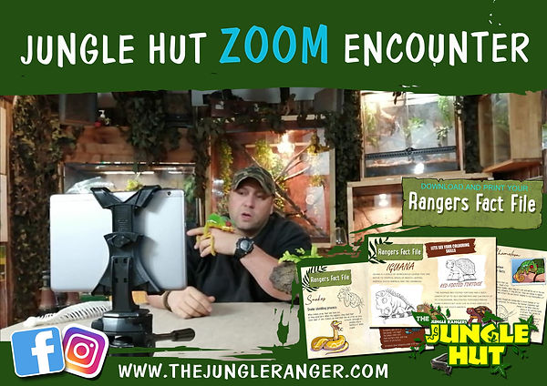 JUNGLE ZOOM PIC ADD_.jpg