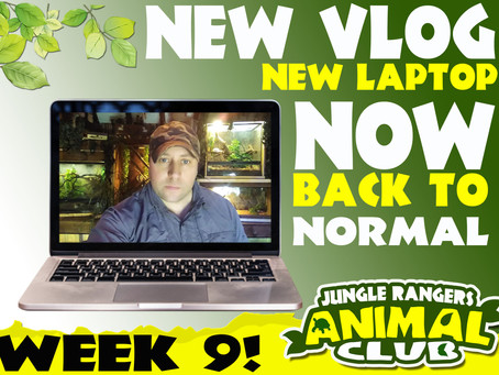NEW laptop NEW vlog week 9