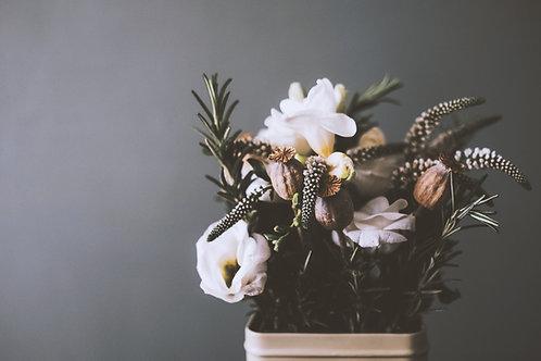 Bunga Angrek