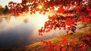 Équinoxe d'automne et acupuncture taoïste