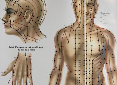 Les points d'acupuncture traditionnelle