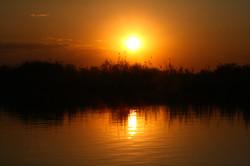 Marsh sunset