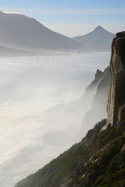 556 Cape Mist