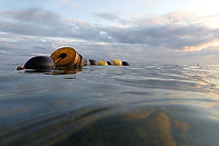 3.Durant_Old wooden buoys.jpg