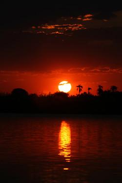 Choose Sunset 2896