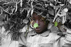 Leaf - A Child with Peas