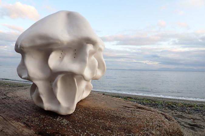 ValerieDurant_jellyfish_porcelain_exampl