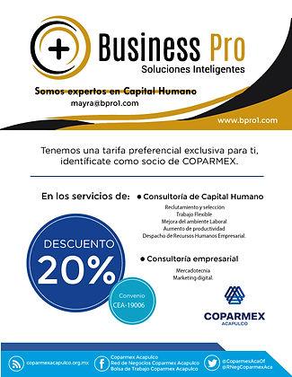 Business-Pro.jpg