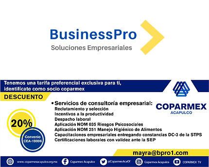 business pro.jpg