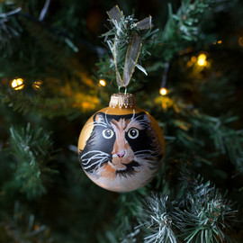cat-pet-portrait-bauble.jpg
