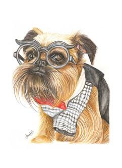 custom-pet-portrait-of-dog-colour-pencil