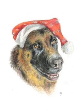 German-shepherd-dog-pet-portrait.jpg