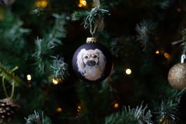 pet-portrait-baubles-christmas.jpg
