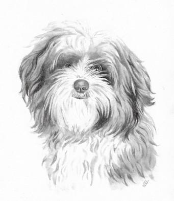 custom-pet-portrait-dog-graphite_labrado