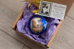 guinea-pig-custom-portrait-christmas-bau
