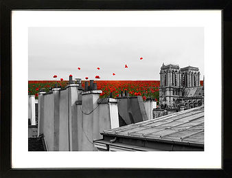 Sur_les_toits_fleuris_A4_encadré_BD.jpg