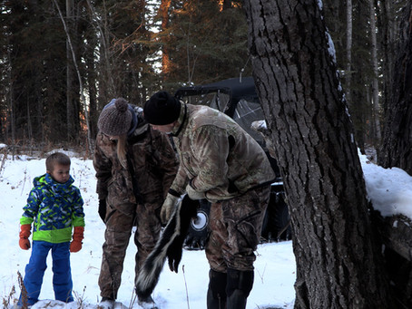 Trapping inc Season 7 Ep 5 This week on Wild TV!