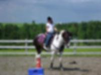 Cours d'équitation à partir de l'âge de 4 ans