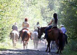 Sortie de groupe à cheval