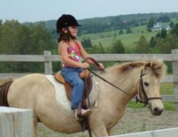 Cours avec poney