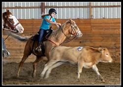 Penning à cheval
