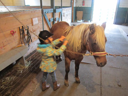 Cours sur poney pour enfant