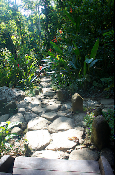 The Spirits paths