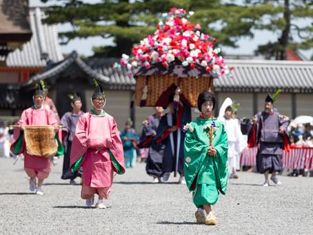 เทศกาลอะโออิ (Aoi Festival)