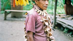 #vocidalcampo: medicina indigena, i dottori della selva.