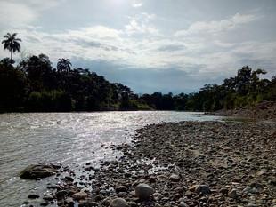 Le sponde del Rio Napo