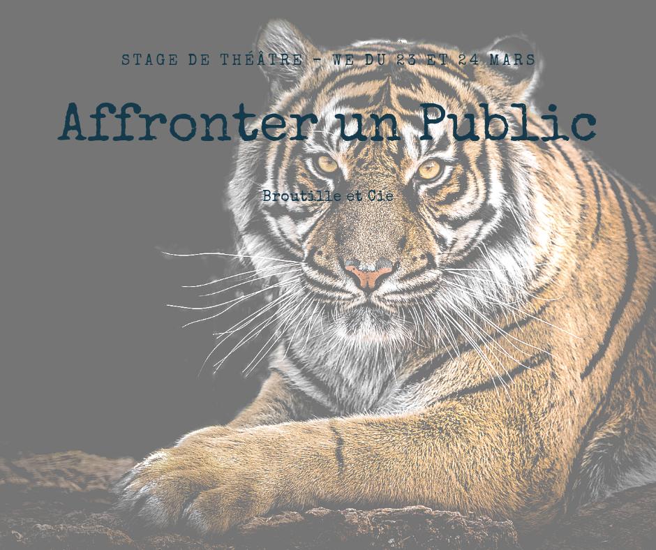 """Un tigre en fond et le titre devant """"affronter un public"""". Symbole de la peur que le public nous inspire, mais que nous pouvons dompter grâce à des techniques de théâtre et de la pratique."""