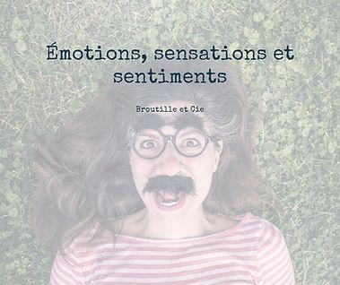 visuel stage émotions sensations et sentiments