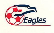 Hinchliffe NJ Eagles logo soccer 1988.pn