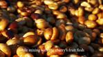 咖啡制作视频英文版.mp4