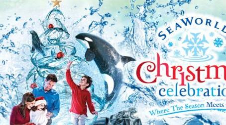 Auditions for Christmas Celebration at SeaWorld Orlando