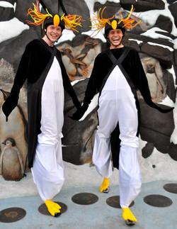 Rockhopper penguin costume