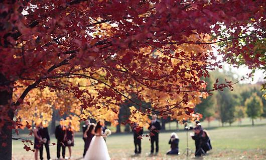 Mariage en automne Domaine des Danjean