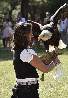 Amoureux de la Provence, Aline et Gilles ont convié les aigles du Verdon.