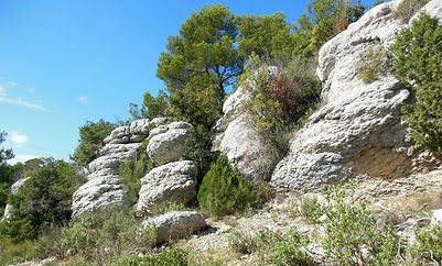 Plateau Siou Blanc Signes