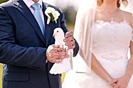 lâcher de colombes, mariage et cérémonie laïque