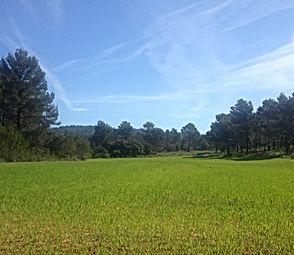 Camping, Grand Prix, Circuit du Castellet, France, du 21 au 24 juin 2018